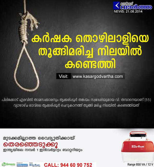 Kasaragod, Kerala, Agriculture, Farmer, Died, Obituary, Hanged, Thrikkarippur, Tree,