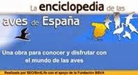 Enciclopedia de las aves