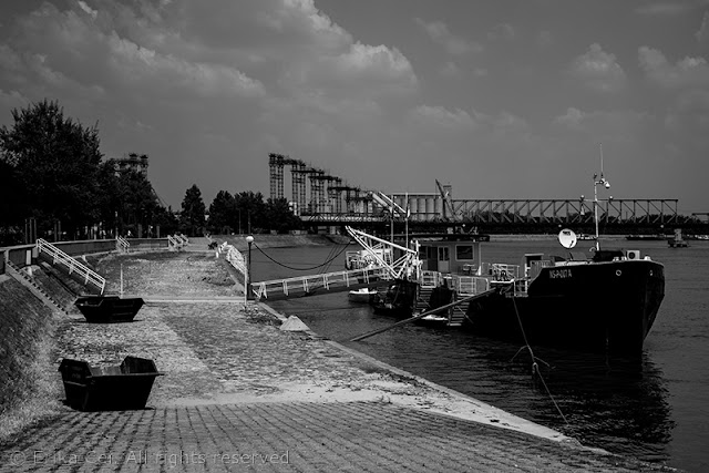 Novi Sad Danubio