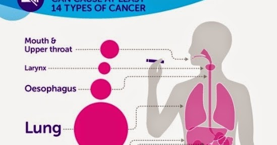 smoking cause cancer The century-long epidemic of cigarette smoking has caused an enormous,  avoidable  in the united states, smoking causes 87 percent of lung cancer  deaths,.
