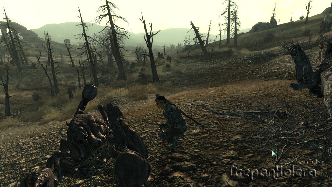 Fallout 3 графические моды скачать