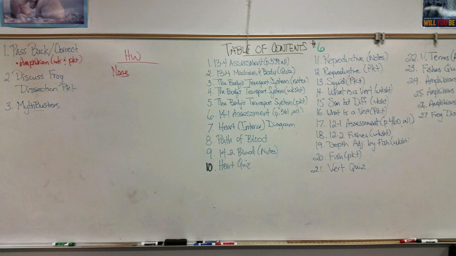 Life cycle of frog worksheets - Okeh Sciencelabs