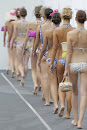 Fotos del desfile / Pictures of the Runway