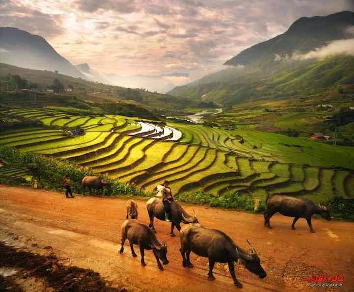مناظر طبيعية، ثقافات متنوعة