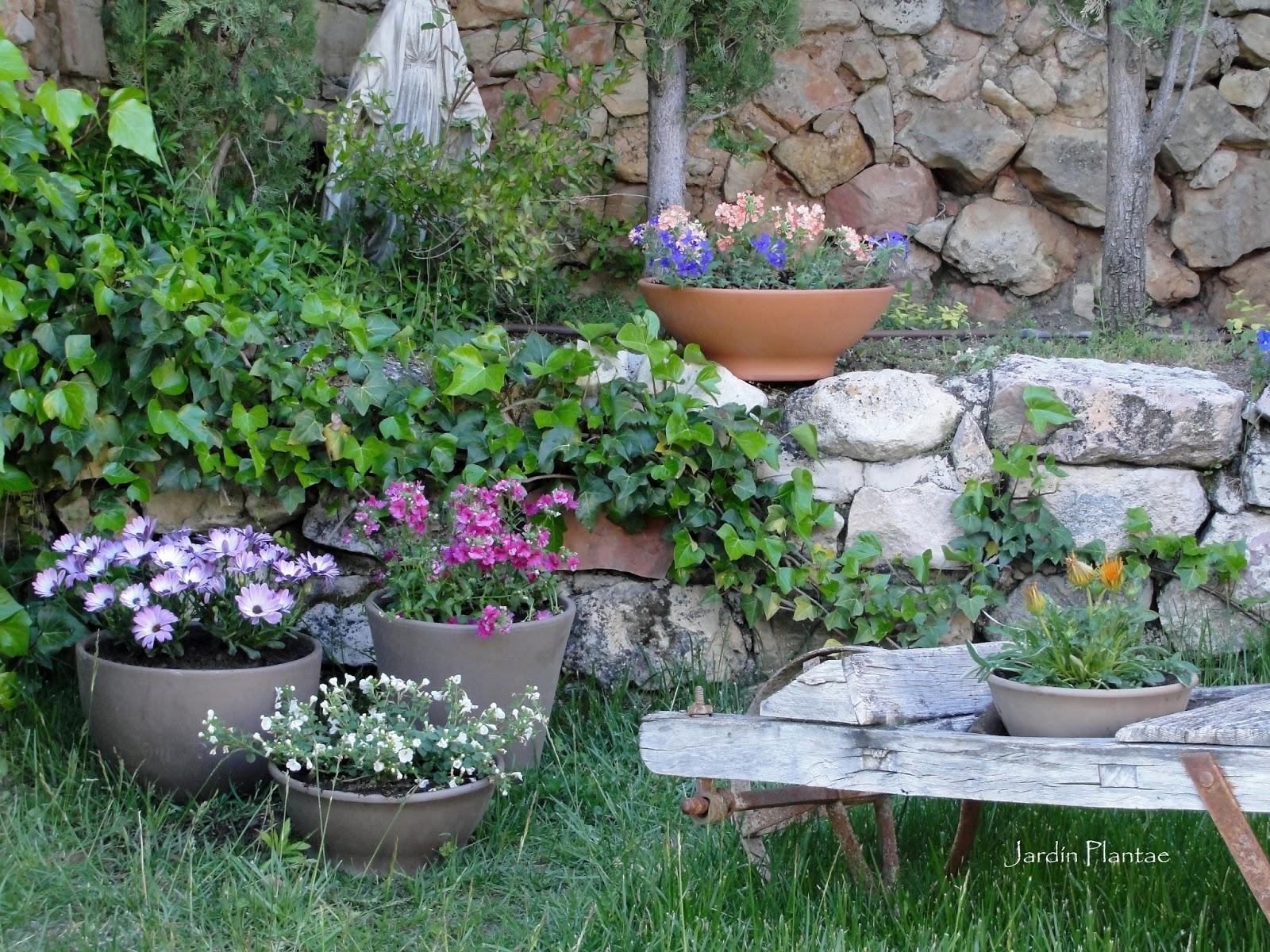 Jardiner a plantae macetas en el jard n for Jardines en macetas
