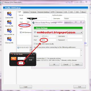 Tutorial Dan Cara Setting Inject dengan Bitvise SSH Client lengkap