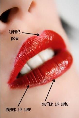 Maybelline Color Sensational Shaping Lip Liner Makeup