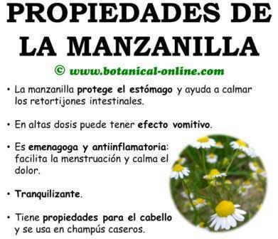 Descubriendo las plantas medicinales plantas y sus for Combinaciones y dosis en la preparacion de la medicina natural