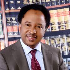 Image result for Senator Shehu Sani