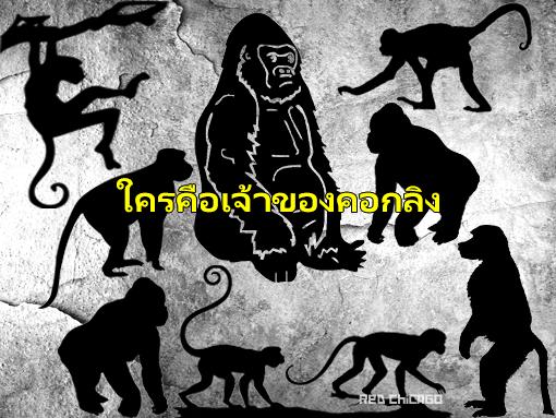 ใครคือเจ้าของคอกลิง
