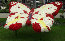Butterfly made of flowers