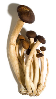 http://www.chowhound.com/food-news/54811/know-your-mushrooms/