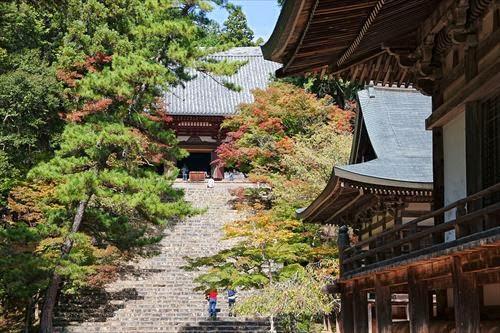 神護寺(じんごじ)