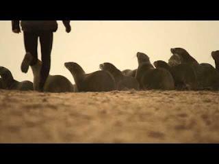 GOING LEFT - Namibia skeleton coast