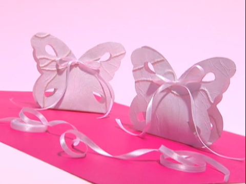 Embalagem de borboleta para convites