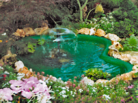 I consigli di nicole for Laghetti nei giardini