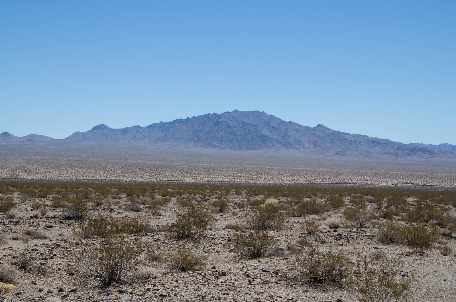 desert case study