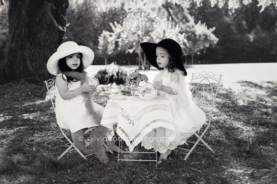 twin toddler girls Seattle childrens photographer