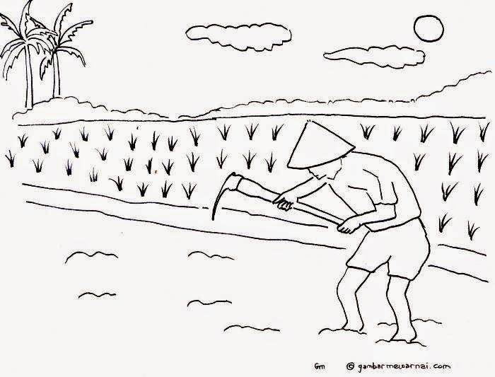 Gambar Gambar Mewarnai Sawah Lucu Pemandangan Kartun di ...