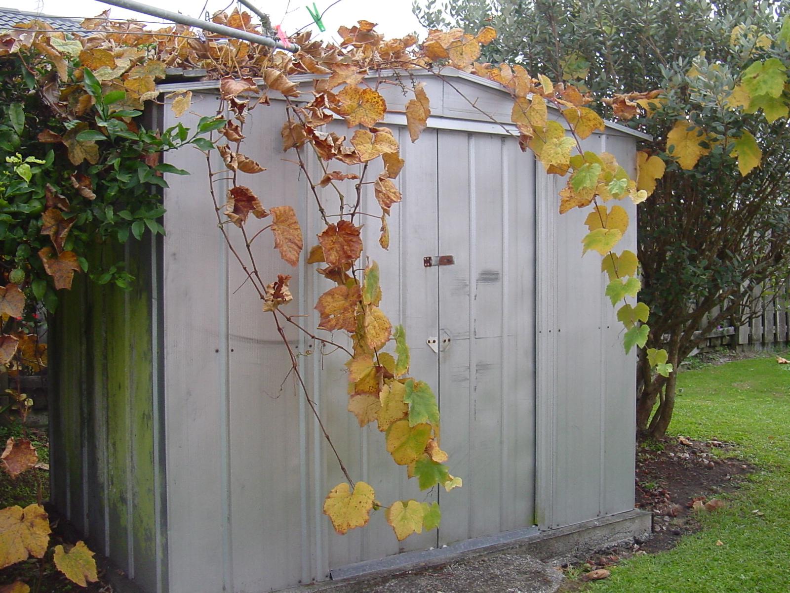Cobertizos de metal para el jard n jard n y terrazas for Cobertizos metalicos para jardin
