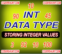 int data type
