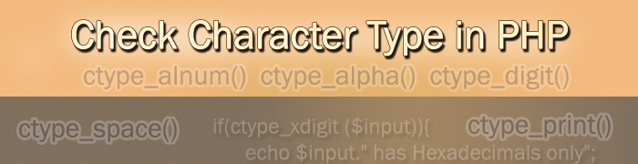Check character type in PHP