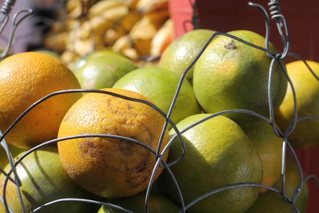 fresh fruits el Pueblito Paisa medellin colombia