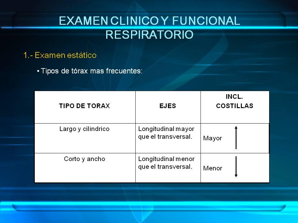 Anatomia y fIsiologia del Sistema Respiratorio | Rehabilitación ...