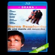 Eterno resplandor de una mente sin recuerdos (2004) BRRip 1080p-720p Audio Dual Latino-Ingles