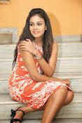 Actress Chandini glam pics-thumbnail-7