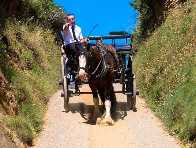 horse drawn carrage, La Sablonnerie, ferry