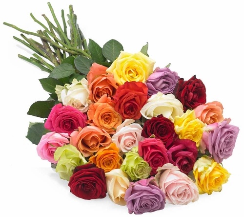 Valentine 39 s roses colors and meanings enjoying wonderful for Different color roses bouquet