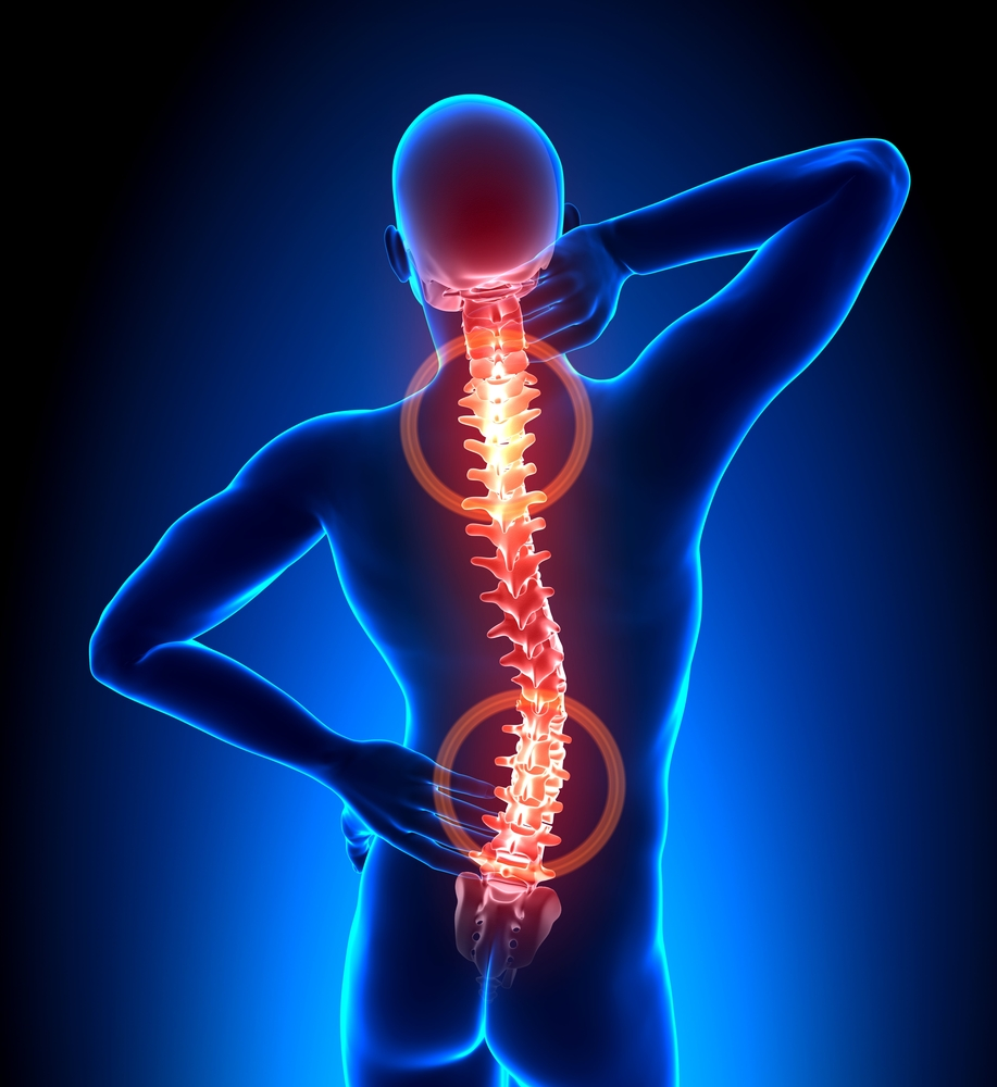 """the painful truth about back injuries essay Not only has he read her essay before  and yet they share this deeper painful preoccupation with truth, which they must express in writing  """"i look back on those months and years and our ."""