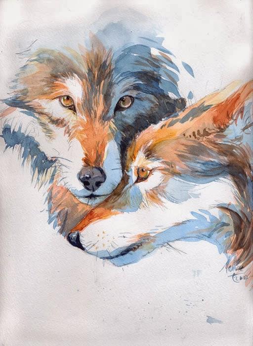une aquarelle dun animal que jaime beaucoup le loup aquarelle sur papier sec - Coloriste Bd