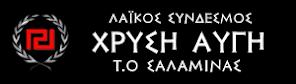 ΤΟΠΙΚΗ ΟΡΓΑΝΩΣΗ ΣΑΛΑΜΙΝΑΣ