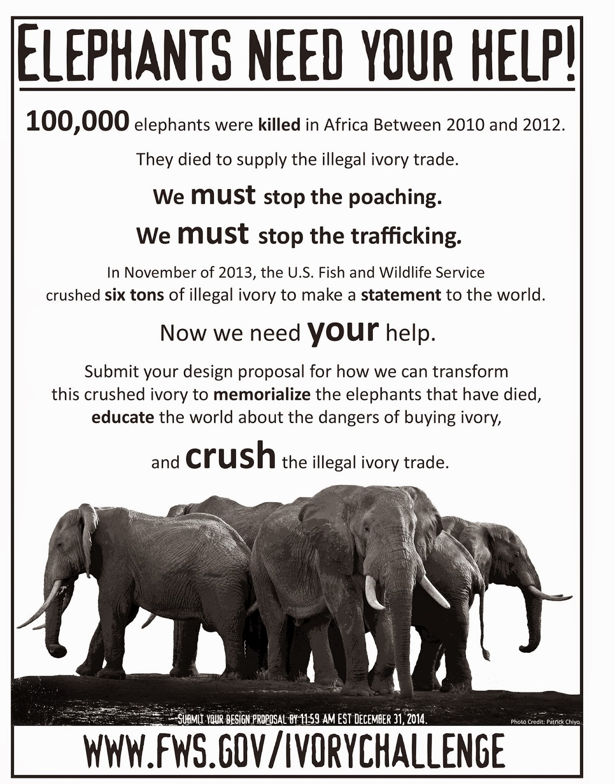 http://www.fws.gov/international/pdf/crushed-ivory-design-poster.pdf