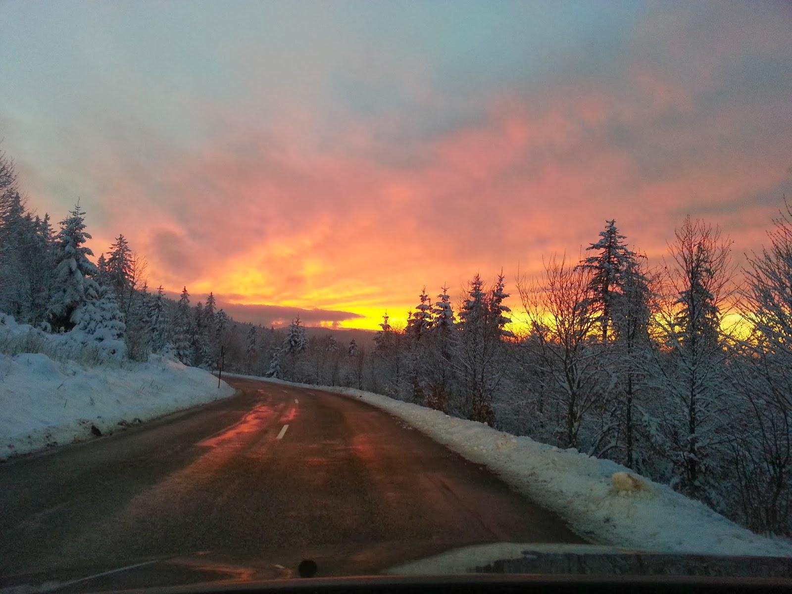 Dans la forêt tôt un matin d'hiver, baie saint-... (item 1) ()