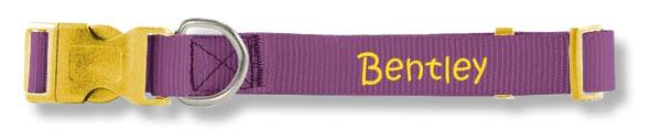 Purple monogrammed collar by PrideBites