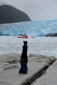 Glaciar Amalia inspiró