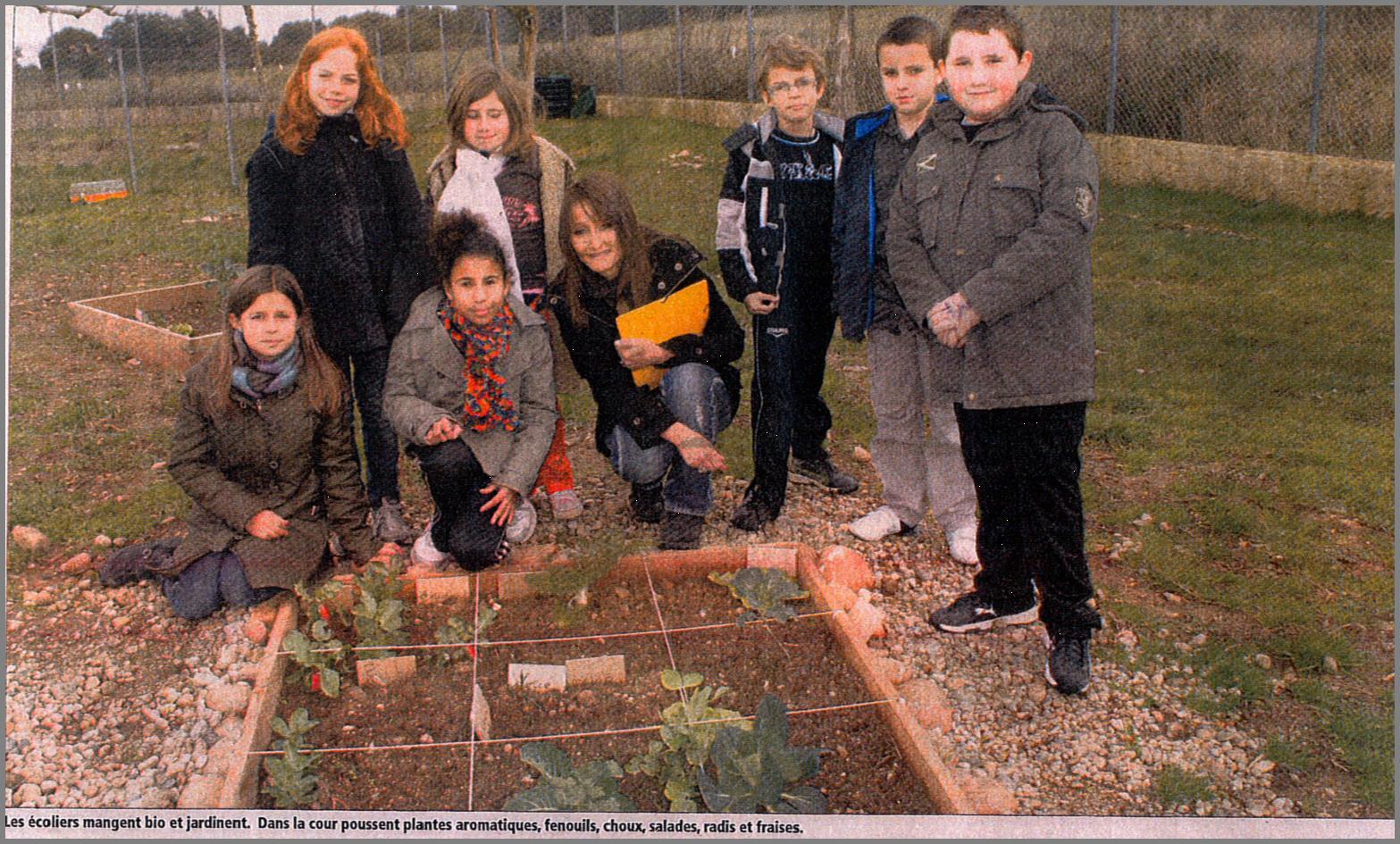 Cantine scolaire bio aleria le jardin potager bio for Le jardin potager bio