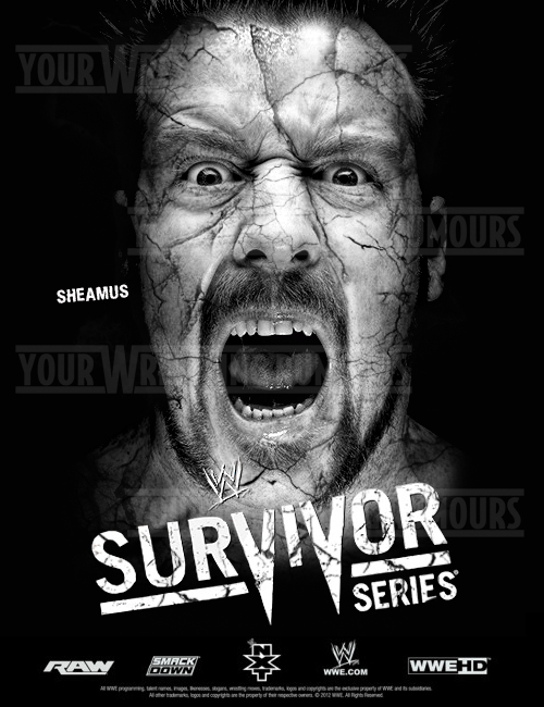 SURVIVOR SERIES 2012 POSTER