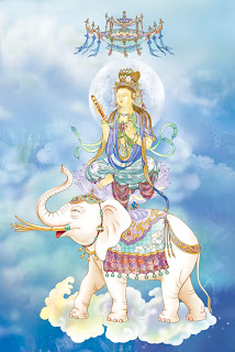 Namo Samantabhadra Bodhisattva ( Universal Worthy Bodhisattva )
