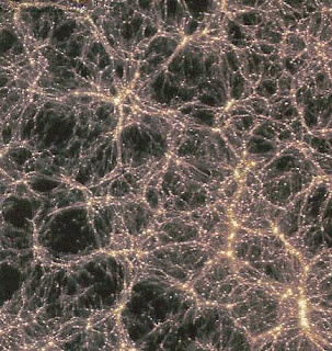 neuron map