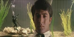 Benjamin divide cena com aquário, elemento emblemático do filme
