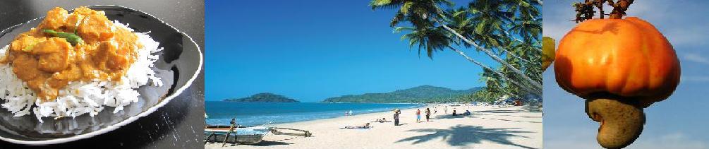 Tour Goa
