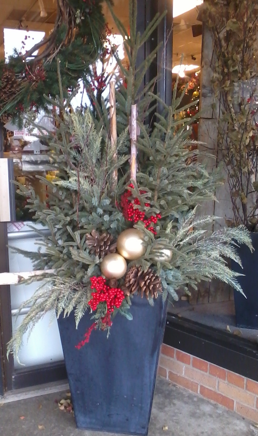 Schaaf Spruce Tips Winter Decor To Beautify The Home