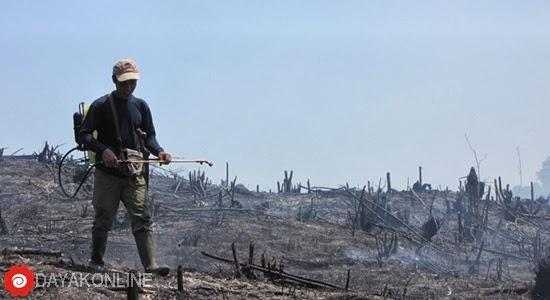Masyarakat Adat memadamkan api lahan Pertanian