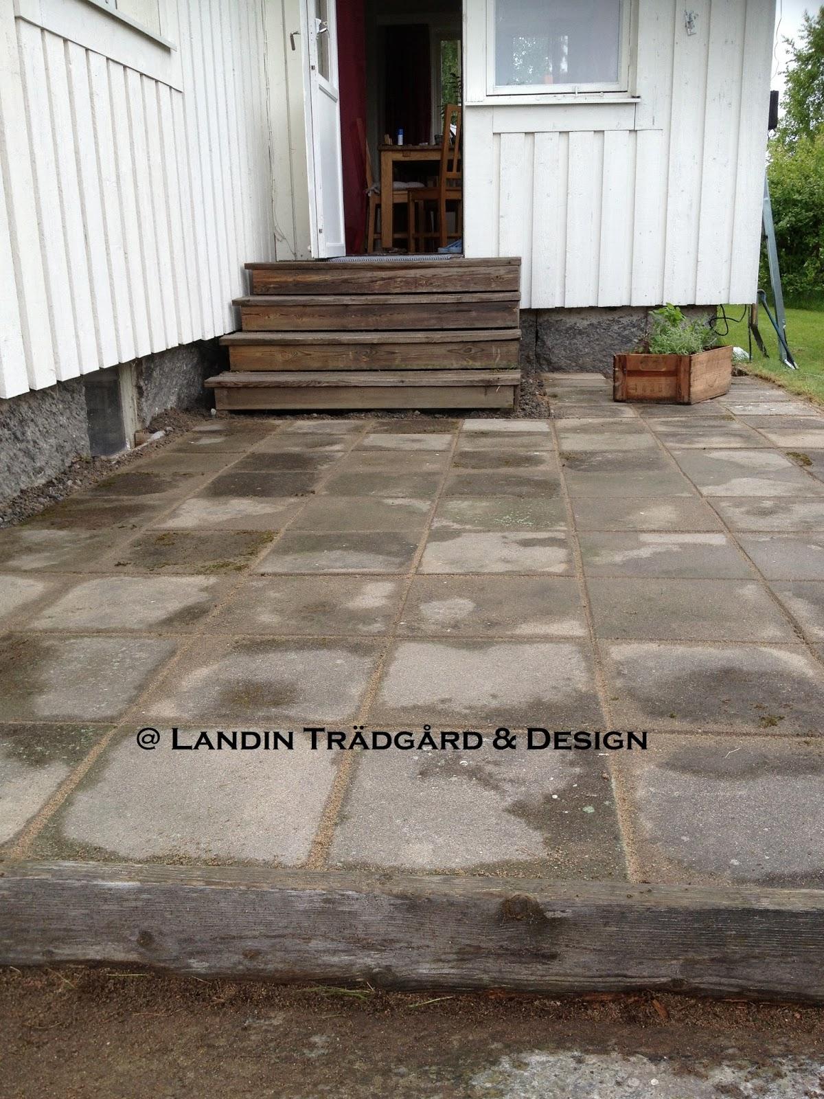 Landin Trädgård & Design blogg