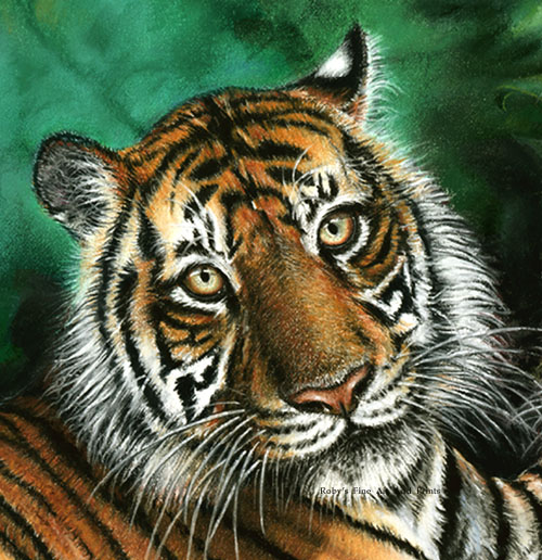the extinction of sumatran tigers in There are only 400 sumatran tigers estimated to be left in the wild today, and they must be protected before they are killed into extinction sign the petition.
