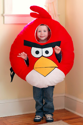 DIY Angry Birds Halloween Costume from I'm the Crazy Lady with All the Babies!